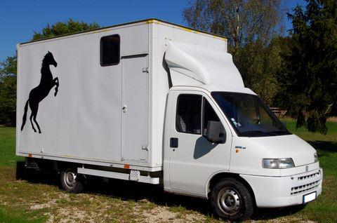 camion chevaux vl deux places 259192 acheter ce camion equirodi france. Black Bedroom Furniture Sets. Home Design Ideas