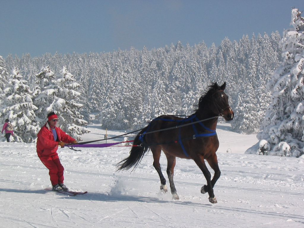 Premiere etoile ski age