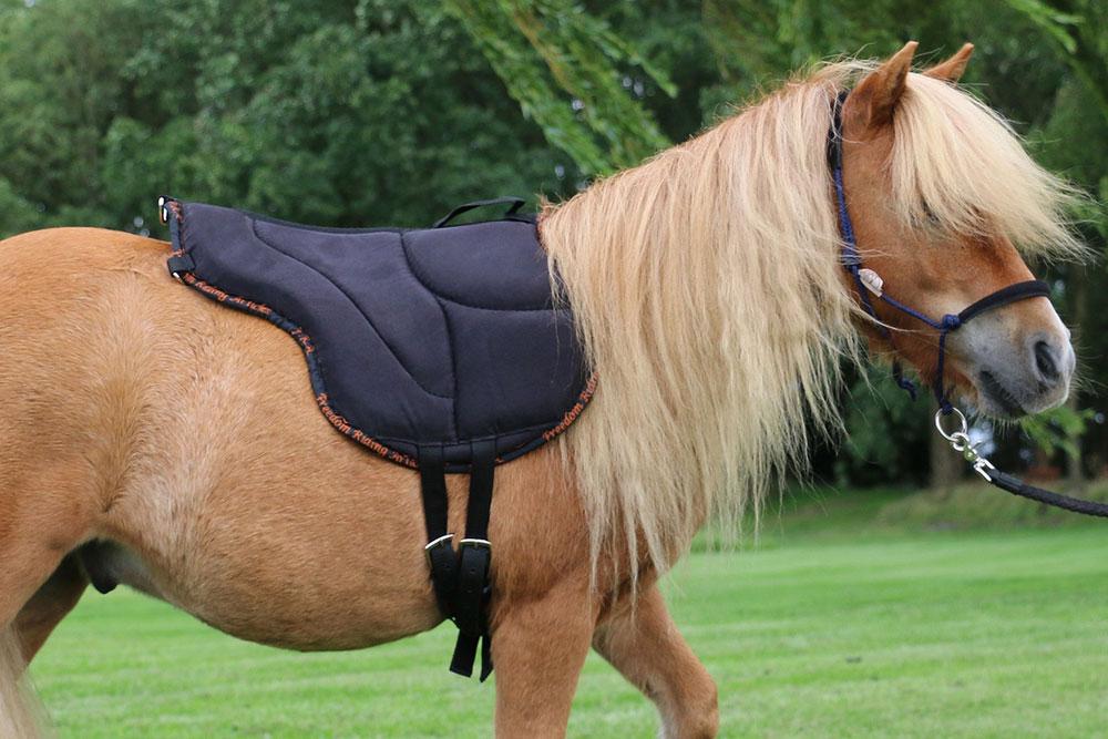 Le tapis de monte à cru : pour varier les plaisirs avec votre cheval !