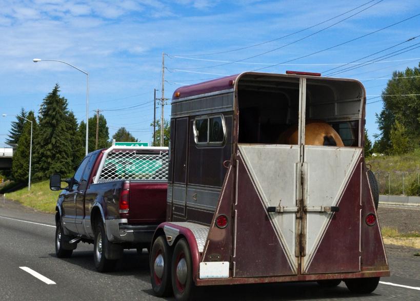 Les différents modèles de vans : configuration traditionnelle ou oblique