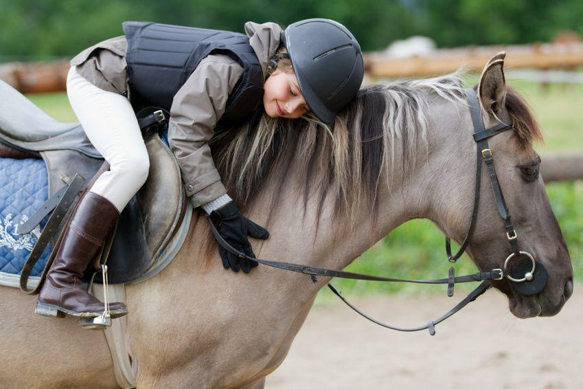 Comprare Un Pony Un Cavallo In Miniatura Che Merita Tutte Le Vostre Attenzioni Equirodi Italia