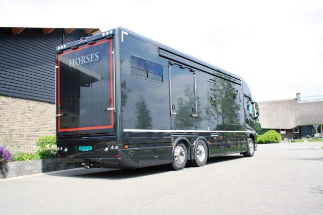 Véhicule léger ou PL d'occasion: savoir choisir le bon camion pour le transport vos chevaux