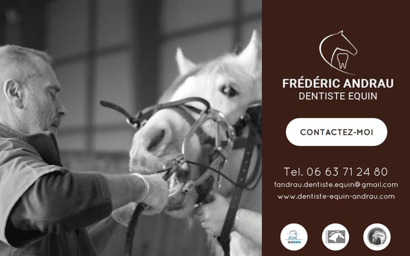 Frédéric Andrau - Technicien Dentiste Equin