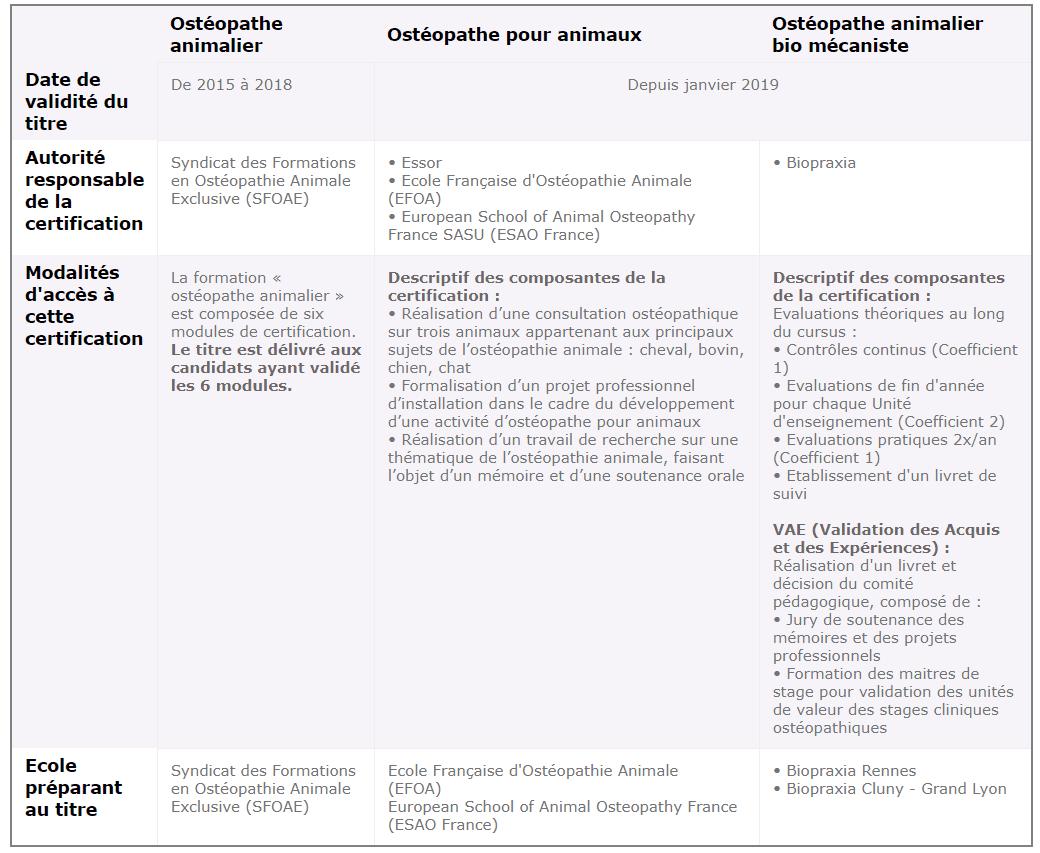 IFCE - Le métier d'ostéopathe équin