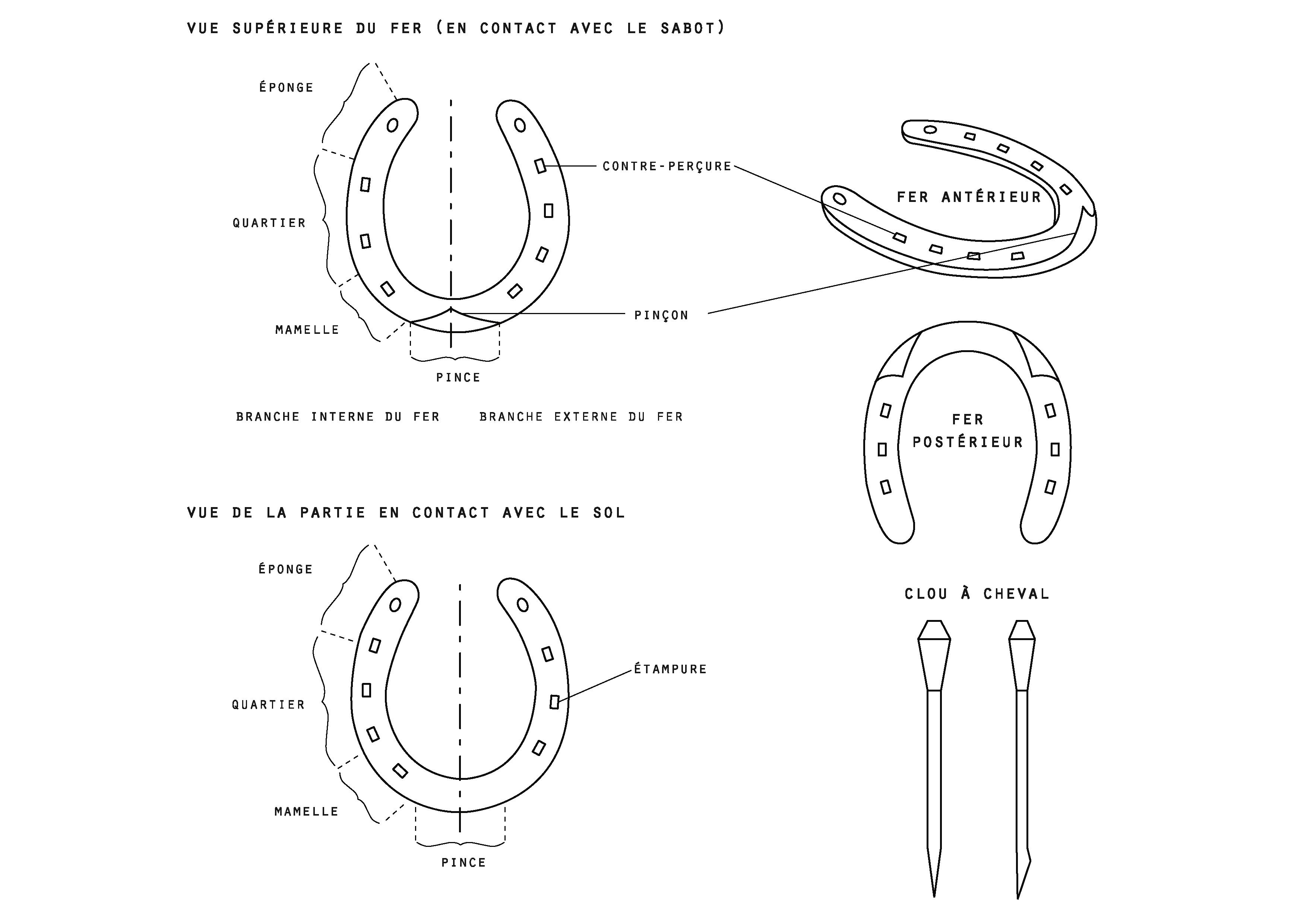 Les différents types de ferrure