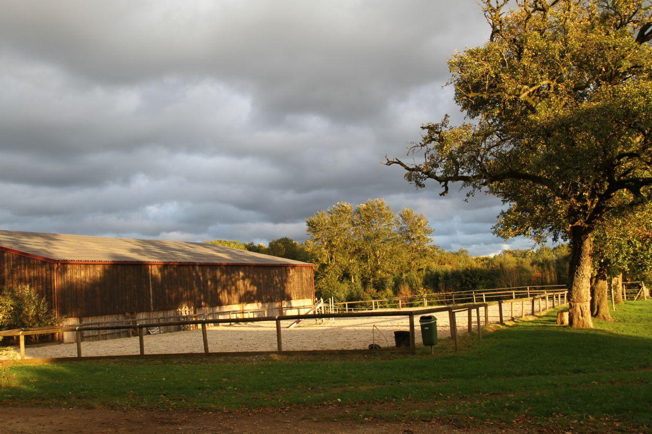 Vendere una proprietà destinata all'equitazione: redigere un annuncio pertinente ed efficace