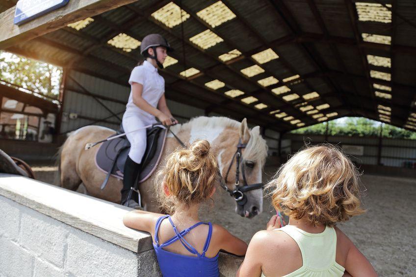 Vendere il proprio pony mettendo un annuncio che ha successo