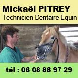 Mickaël PITREY - Dentiste Equin